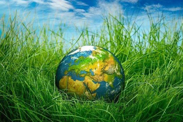 Час земли 2019. Ответы на часто задаваемые вопросы